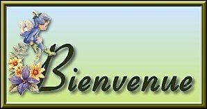 je vous souhaite la bienvenue sur mon blog :)