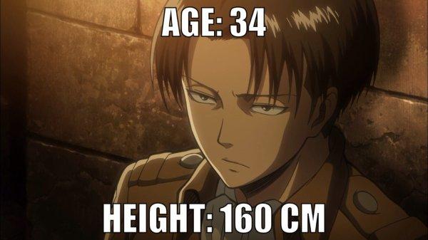 Image 237 : Levi en 160 cm