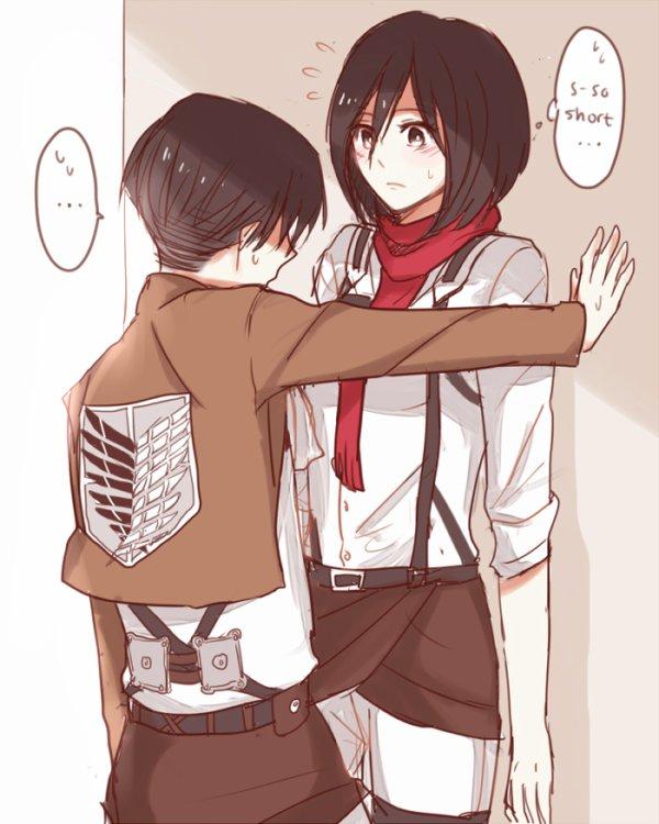 Image 356 : Mikasa x Levi [ Partie 3 ]