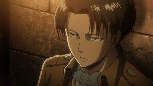 Image 463 : Niveau Beautée : Levi ou Yato ?