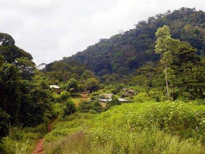 MONTAGNES DE OUEST  IVOIRIEN