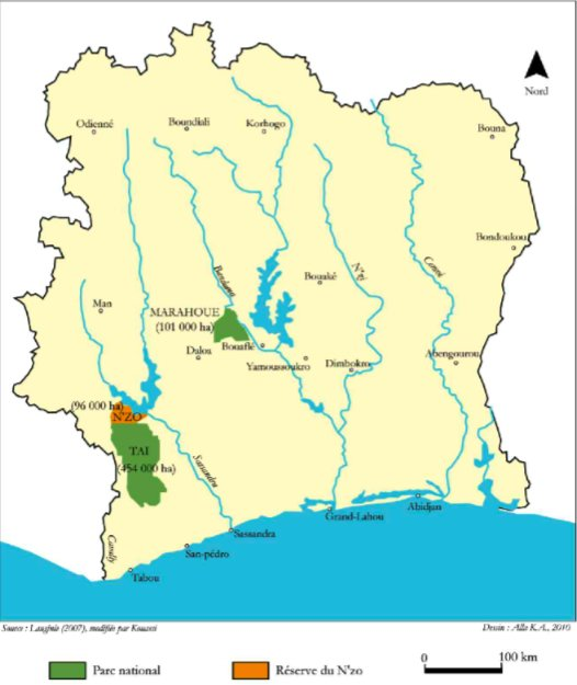 parc  national  du  tai...L'histoire de la création du Parc National de Taï commence en 1926. Riezebos et al. (1994), in Adou et al. (2005), rappellent que l'administration coloniale créa le « Parc refuge de la région forestière du Moyen et du Bas Cavally » par l'arrêté 2508/AG/11/04/1926. Après plusieurs appellations successives, la réserve intégrale de faune et de flore de Taï devint, en 1972 le « Parc National de Taï » par décret n° 72-544 du 28 août 1972, avec une superficie de 350.000 hectares. En 1973, le Parc fut amputé d'une surface de 20.000 hectares au profit de la Réserve du N'zo par décret n° 73-132 du 21 mars 1973. En 1978, le grand intérêt écologique et biologique du Parc fut reconnu par la communauté internationale. Ainsi l'Unesco l'inclut dans le réseau des Réserves de la biosphère et l'inscrivit par la suite en 1981 sur la liste du patrimoine mondial. Le parc national de Taï est prolongé, au Nord par la Réserve de faune du N'zo. Cet ensemble constitue le plus grand bloc intact de forêt ombrophile primaire d'Afrique de l'Ouest.....