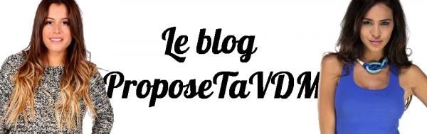 Découvre ce blog ! ProposeTaVDM, un concept innovant