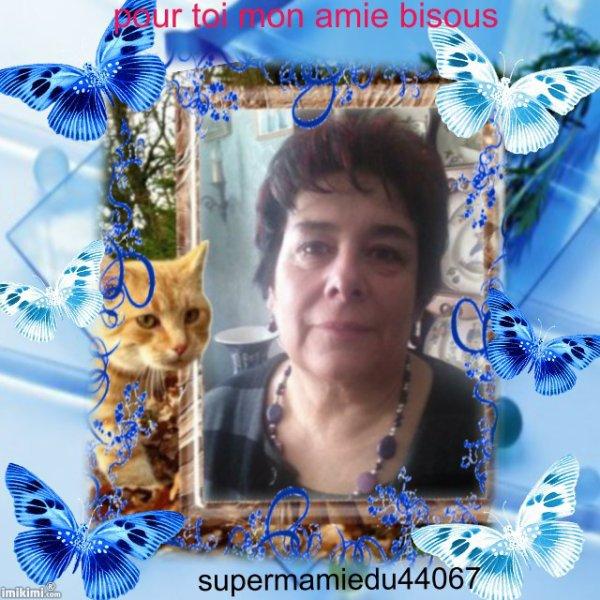 jolie creation de mon amie supermamiedu44067
