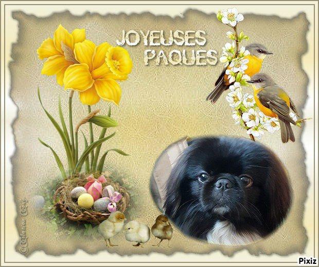LIPTON VOUS SOUHAITES DE JOYEUSES PAQUES