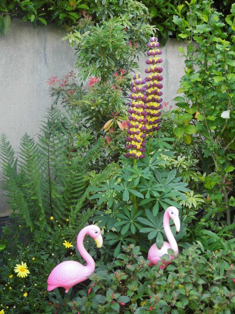 un petit coin du jardin
