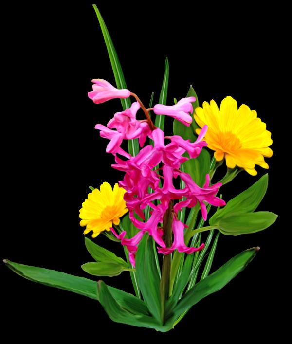 si nous voyons une belle fleur