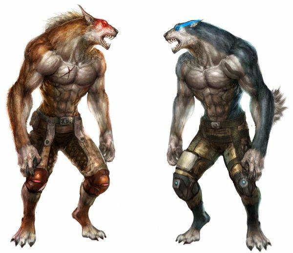 les loup de wolf team