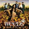 weeds-streaming