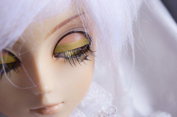 sp 27 / Shine