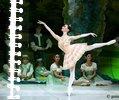 Photo de x-ballet-x