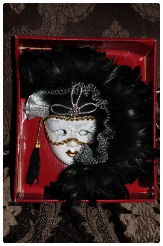 Masque à plumes vénitien
