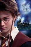 Photo de harry-ginny-hermione