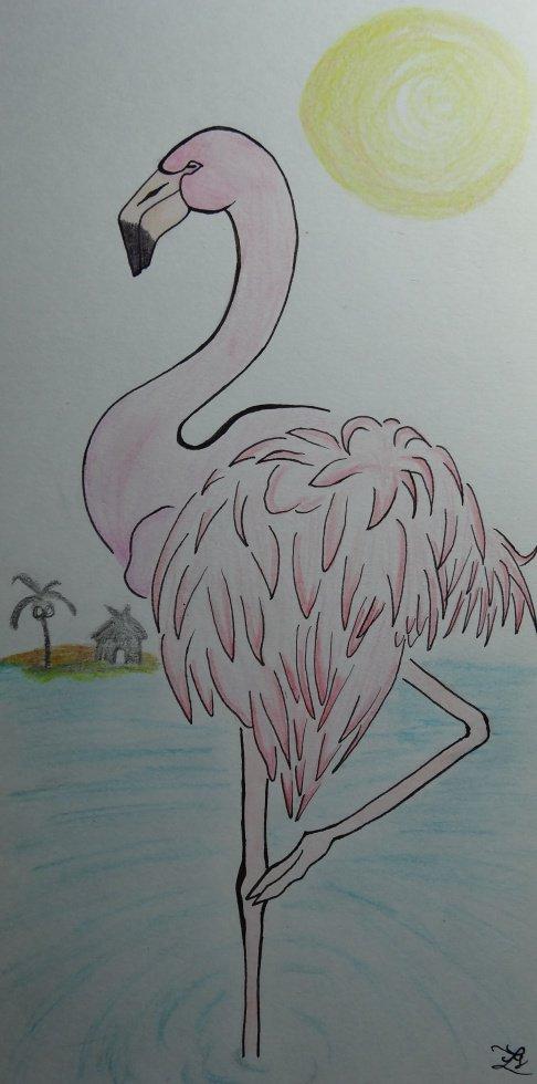 Mr Flamingo