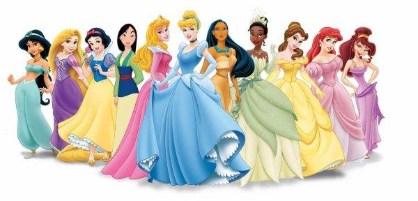 Avez vous déjà vu une princesse grosse ?