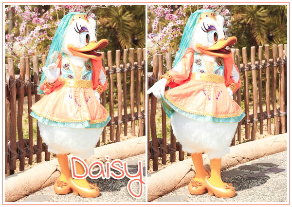 Daisy Duck à Arabian Coast - Tokyo DisneySea ● ● ● ● ● ● ● ● ● ● ● ● ● ● ● ● ● ● ● ● ● ● ● ● ● ● ● ● ● ● ● ● ● ● ● ●