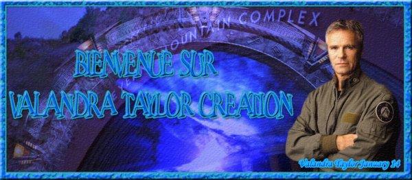 Bienvenue sur mon blog de créations...