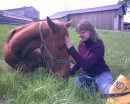 Photo de une-nounou-pour-chevaux