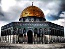 Photo de muslimdz