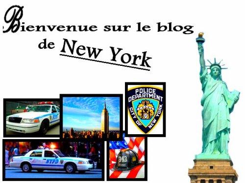 Bienvenue sur mon blog sur New York