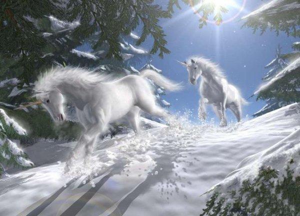 Petite Chanson avec les Licornes. ♫