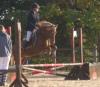 Girlsstoriesandhorses