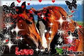 deux chevaux amoureux