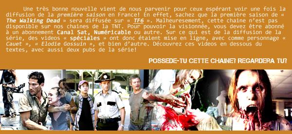 """ The Walking Dead "", enfin diffusé en France!"