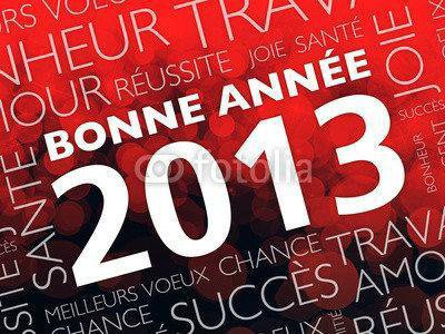 Je vous souhaites à toutes une bonne et heureuse année 2013