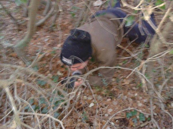 a la recherche des champignon yeah !!!