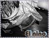 El-Latinoh-0fficieL