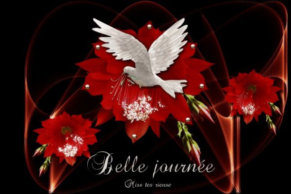 belle journee