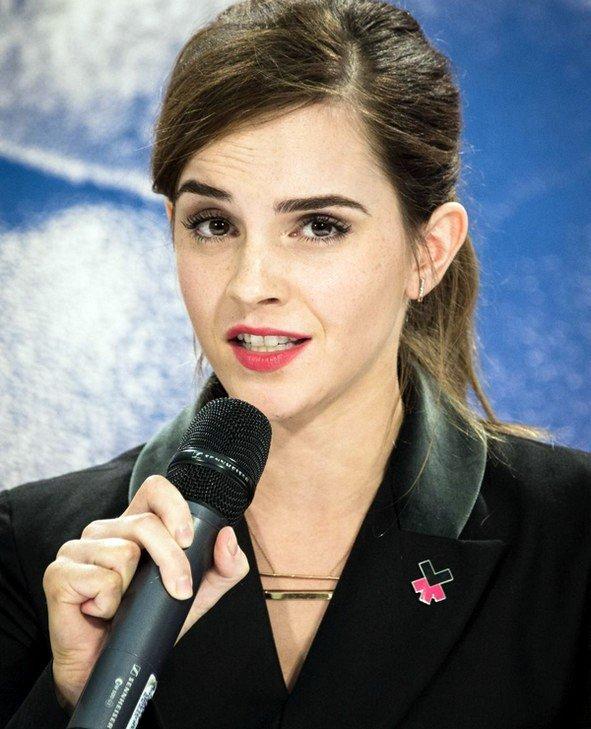 23 jan 2015 : Emma délivre un discours sur l'égalité des sexes au forum de Davos, en Suisse
