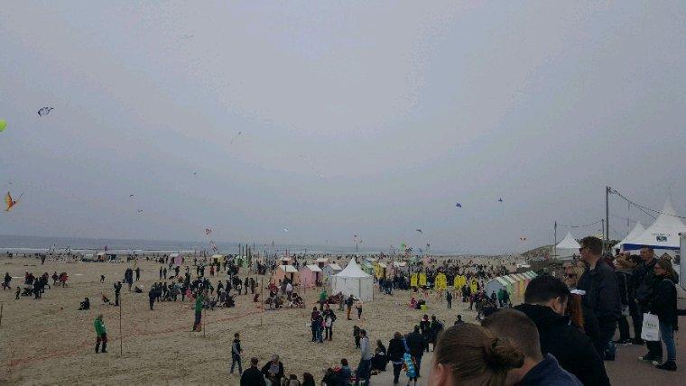 Festival cerf volant Berck-sur-mer