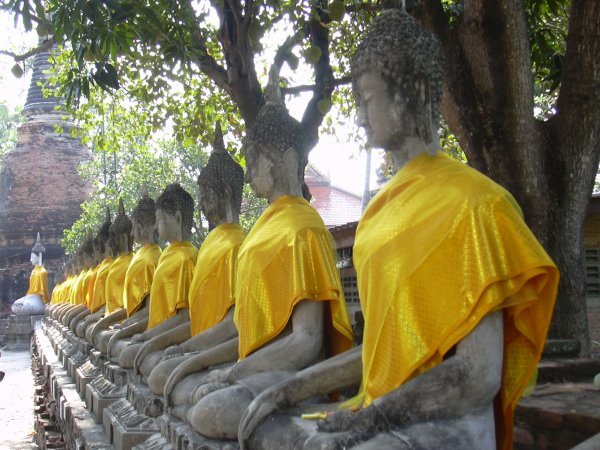 """Me tong kit tun adib, me tong fan tun anakrot, tan samati hai neo ne nei pathuban ti tham""  Siddhārtha Gautama"