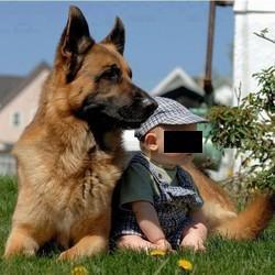 L'animal domestique et son rôle dans le développement de l'enfant