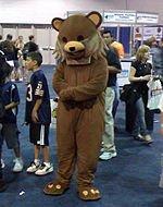 """Les dangers de """"Pedobear"""" (pédo-ours), la mascotte pédophile"""