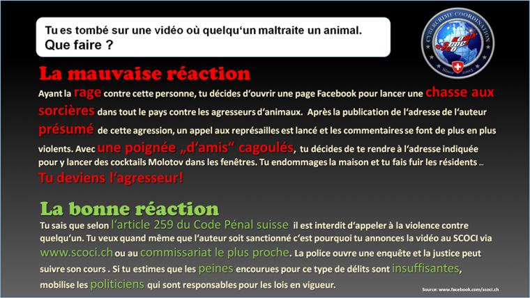 Tu es tombé sur une vidéo où quelqu'un maltraite un animal.