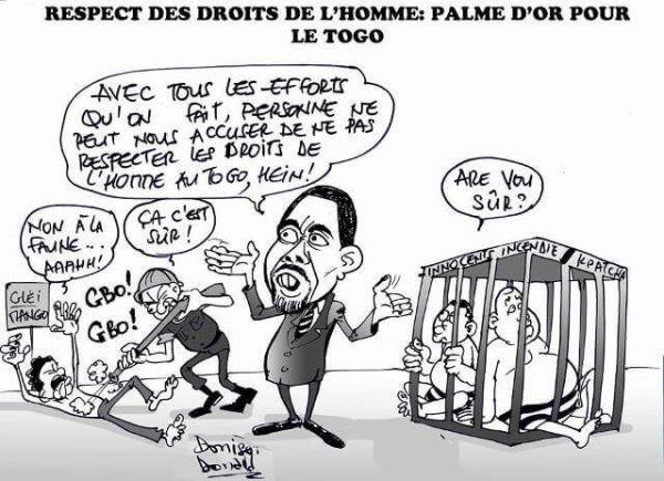 Droits de l'Homme au Togo : L'EPU et le bal des courtisans, Pius Agbetomey lance les hostilités