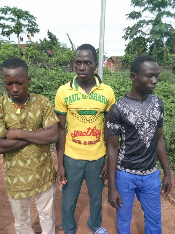 Recensement a la mode stalinienne !!! Comment les autorités togolaise peuvent tomber ci bas? Togolaise et togolais, lèves toi et dis non!!! Où sont les patriotes !!!