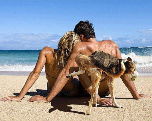 Plaisirs de la plage