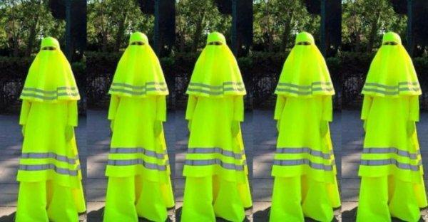 L'arabie saoudite apporte son soutien à la révolte des gilets jaune
