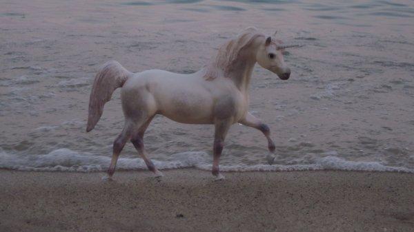 Licorne à la plage ?