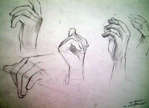 signe langue