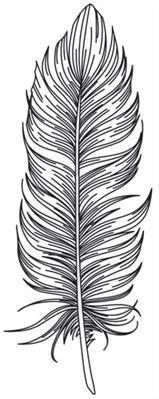dessine plume
