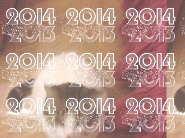 Minou Et Moi Vous Souhait Un Tre Bonne Année 2014 Et Un Bonne Santé