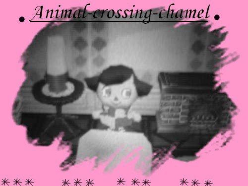 Blog de animal-crossing-chamel♥♥♥