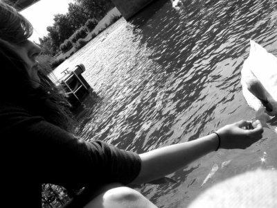 Je t'emmerde et j'aime le cygne qui est avec moi sur la photo.