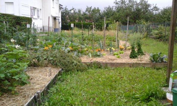 mon jardin du 17 mai a aujourd huis