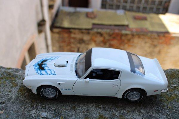 ERTL Pontiac-Firebird Trans-Am 1973
